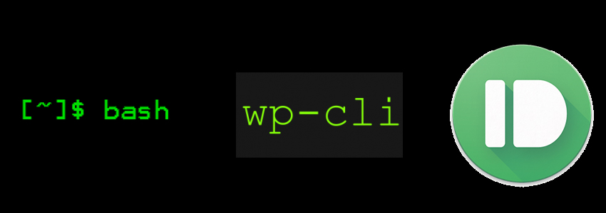 Ant hacking techniques: bash wp-cli command to validate wp core